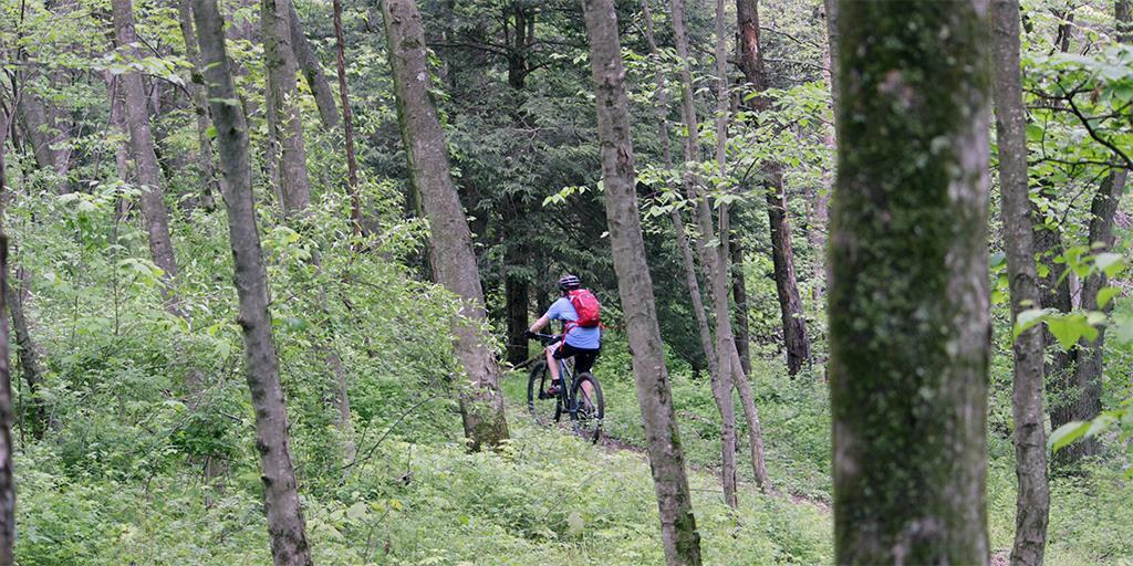Mountain Biking: A Challenging and Rewarding Way to Experience Penn's Woods
