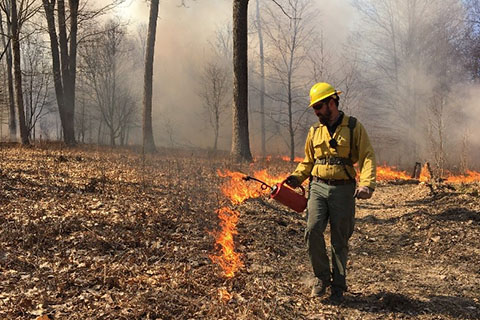 BLOG IMAGE - Forester Pete Zoschg works a prescribed burn.jpg