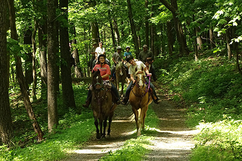 BLOG IMAGE - Horseback riding doubling gap tuscarora state forest.jpg