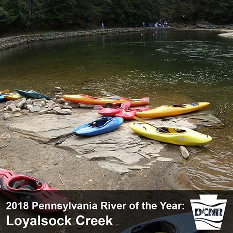 BLOG IMAGE - river of the year.jpg