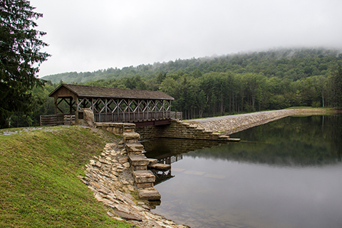 Marilla_Modern_Bridge_Blog.jpg
