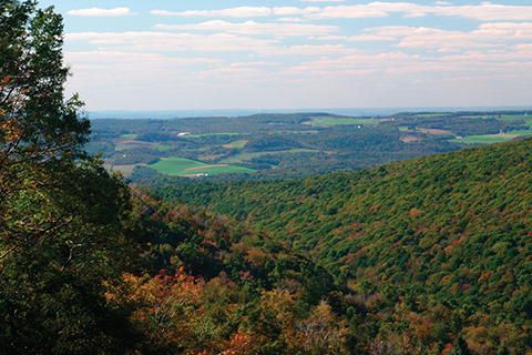 Laurel Ridge State Park