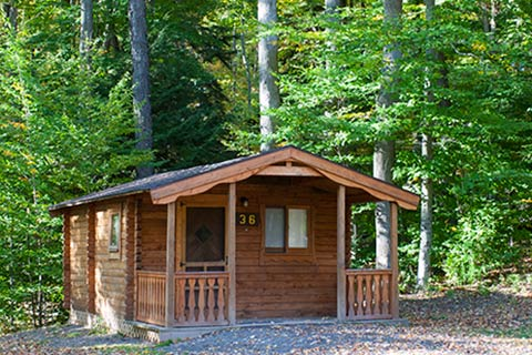 A modern log cabin is near trees at Hills Creek State Park.