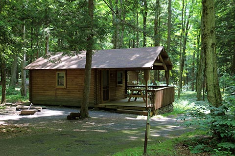 A cozy, modern log cabin is in a forest at Lackawanna State Park.