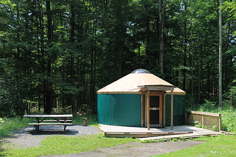 A round, canvas tent on a wooden platform is by a picnic table and the forest at Lackawanna State Park.