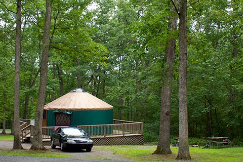 A car is parked in front of a round tent on a wooden platform near a forest.