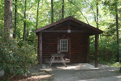 A small log cabin is surrounded by forest at Tuscarora State Park.