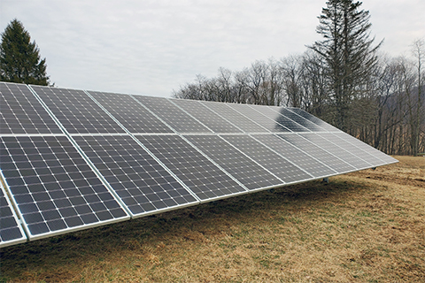 A line of solar panels in a field with trees in the background