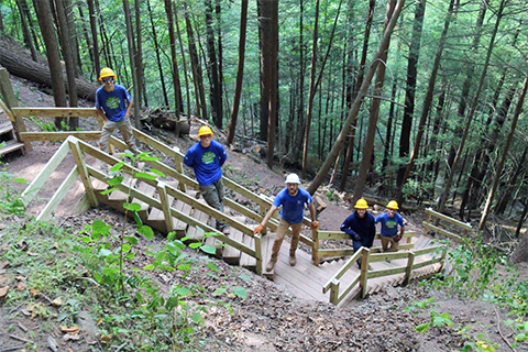 Crew members stand on wooden staircases ascending a mountain under a conopy of trees
